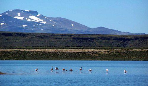 El Parque Nacional Laguna Blanca cumplió 75 años