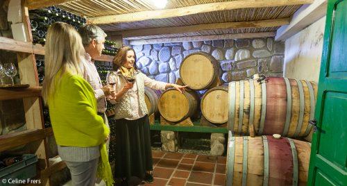 En Cachi, se afianzan los vinos de altura con sello de autor