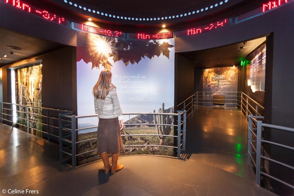 Museo de la Vid y el Vino, Cafayate @Celine Frers
