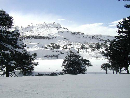 Ski Week en Oferta