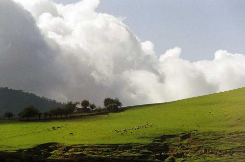 Los imponentes paisajes de Tafi del Valle