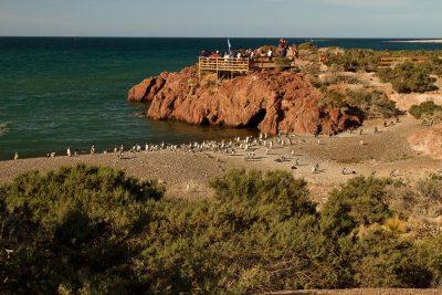 Punta Tombo, Chubut - entretur
