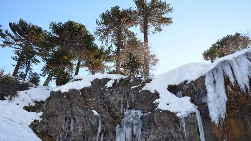 Campeonato Argentino de Snowkite en Caviahue