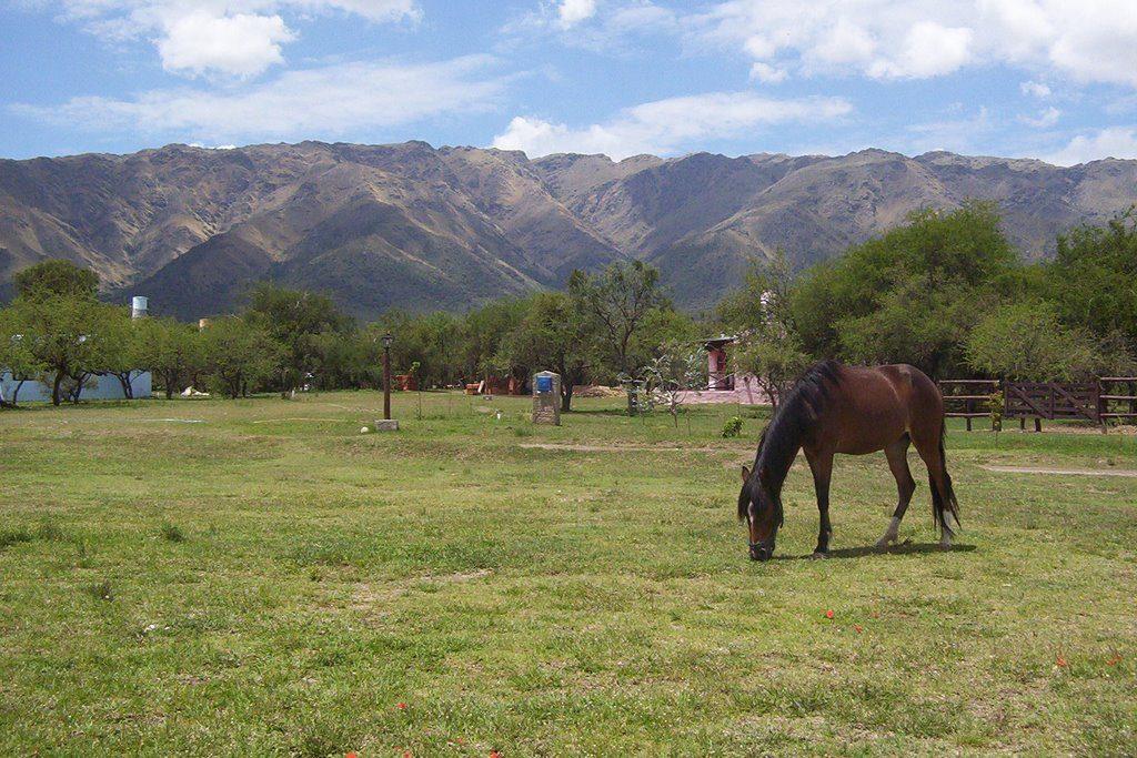 Carpintería, San Luis - mapio.net