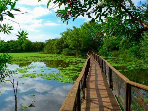 La Reserva Ecológica de Vicente López una opción para el finde