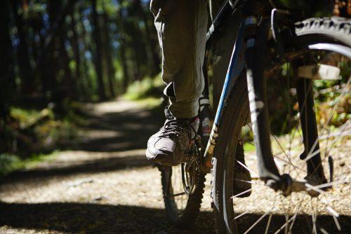5 Parques Nacionales para recorrer en bici