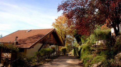 Descubrir el Valle de Calamuchita en otoño es mágico