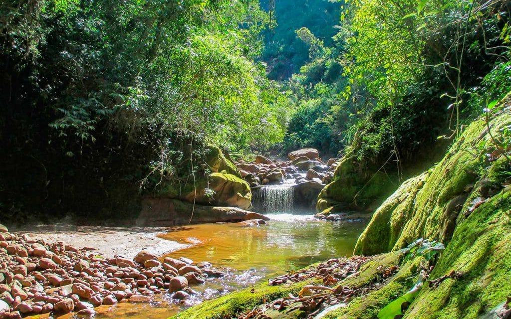 Parque Nacional Calilegua - foto: Administración Parques Nacionales