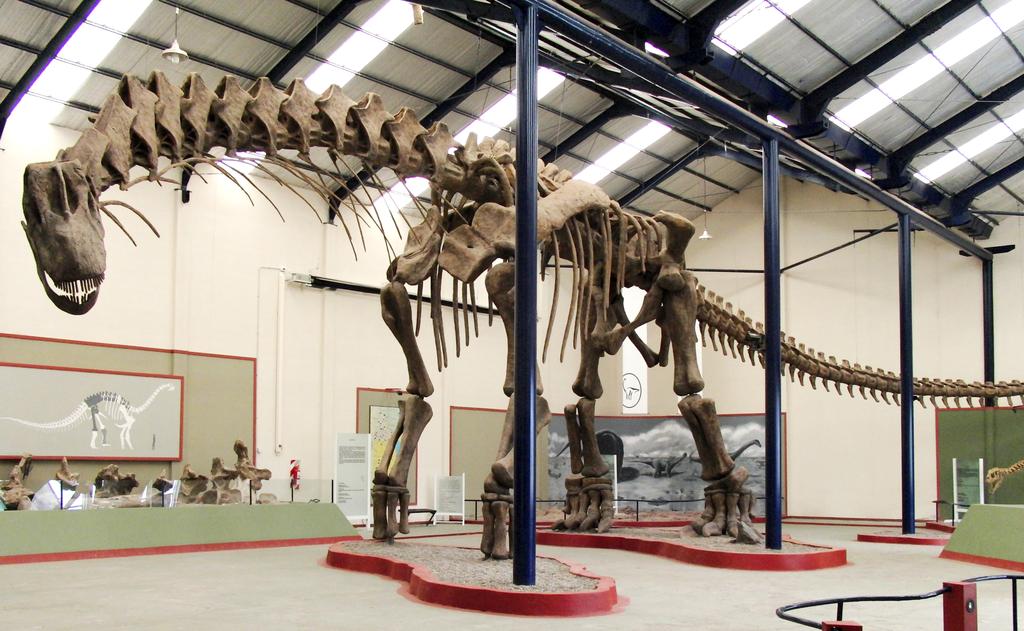 Reconstrucción del esqueleto de Argentinosaurus, en el Museo municipal Carmen Funes, de Plaza Huincul.