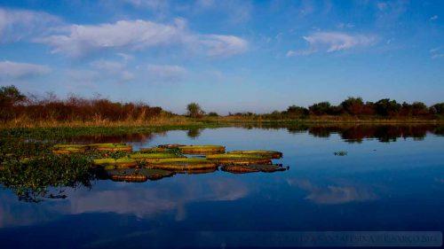Jaaukanigás, el sitio Ramsar de Santa Fe
