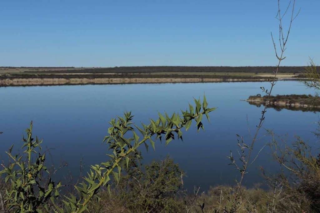 Area Protegida Laguna Guatrache, La Pampa - Foto: Roberto Mario Russo