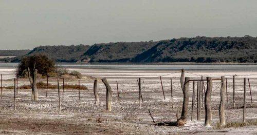 Area Protegida Laguna Guatraché, la magia de sus aguas y su gran biodiversidad